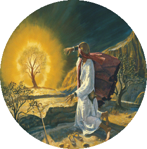 moses-burning-bush-39464-wallpaper.png